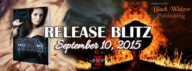 release blitz - good vs evil series